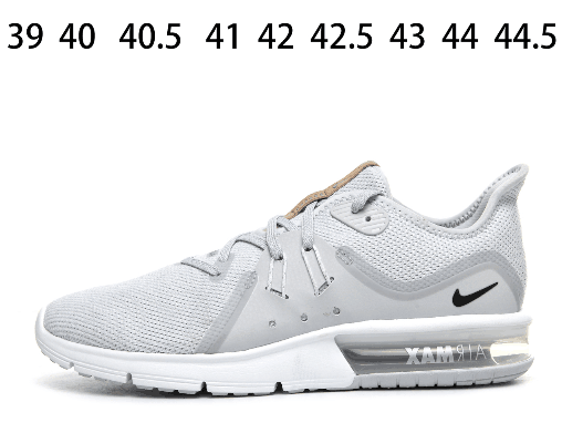 Nike Air Max Sequent 3 White Grey Shoes